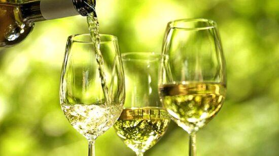 Academia do Vinho Verde lança programa de formação gratuita